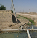 Figure 2. A potable water main runs through a raw sewage canal near a residential area of Nasiriyah in southern Iraq. Distribution of potable water remains a big problem for the citizens. Existing water lines are few and are often contaminated because of a high water table and the presence of open sewage. USAID partner RTI is finding solutions for the aging, poorly maintained water and wastewater infrastructure. Photo courtesy of Thomas Hartwell, USAID.