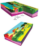 Figure 1. The USGS fault-block model of the San Francisco Bay area is now available for download. First responders will find insights from conducting quake simulations using the 3D model.