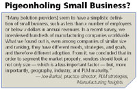 Pigeonholing Small Business?